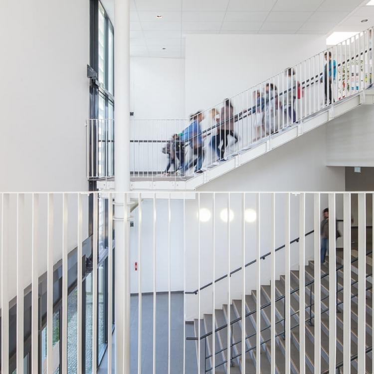 cobalt-architecture-enseignement-bourg-la-reine11