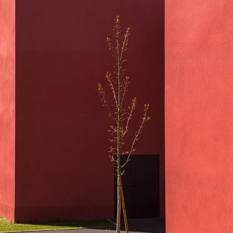 cobalt-architecture-enseignement-bourg-la-reine3