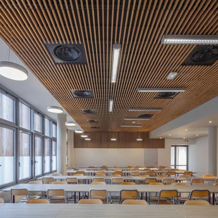 cobalt-architecture-enseignement-chappe21